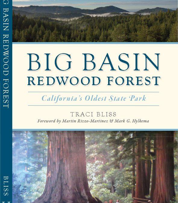 Big Basin Redwood Forest, California's Oldest State Park